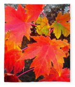 Falltime ...  Fleece Blanket