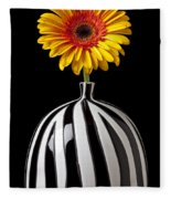 Fancy Daisy In Stripped Vase  Fleece Blanket