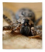 Spider Close Up Fleece Blanket