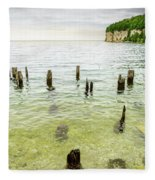 Fayette State Park Shoreline Fleece Blanket