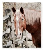 February Horse Portrait Fleece Blanket