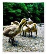 Feed Me Seymore - Baby Geese Fleece Blanket