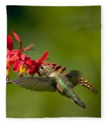 Feeding Hummer Fleece Blanket
