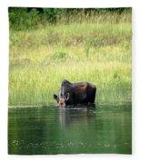 Feeding Moose Fleece Blanket