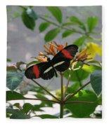 Feeding Time - Butterfly Fleece Blanket