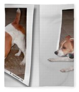 Feeling Frisky - Cross Your Eyes And Focus On The Middle Image Fleece Blanket