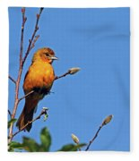 Female Baltimore Oriole Fleece Blanket