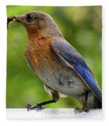 Female Bluebird Feeding Her Brood Fleece Blanket