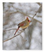 Female Cardinal In Winter Fleece Blanket