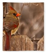 Female Cardinal On The Fence Fleece Blanket