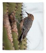 Female Gila Woodpecker-img__2691-2016 Fleece Blanket