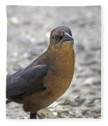 Female Grackle With Attitude Fleece Blanket