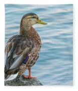 Female Mallard At The River Fleece Blanket