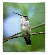 Female Ruby Throated Hummingbird Fleece Blanket