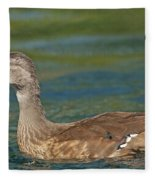 Female Wood Duck Fleece Blanket