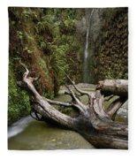 Fern Canyon Creek Fleece Blanket