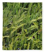 Fern Fleece Blanket