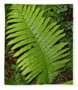 Fern Leaf In June Fleece Blanket