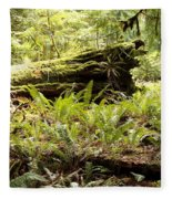 Fern Valley Fleece Blanket