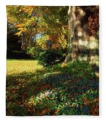 Fernhill Gardens, Co Dublin, Ireland Fleece Blanket