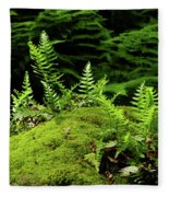 Ferns And Moss On The Ma At Fleece Blanket