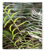 Ferns In Natural Light Fleece Blanket