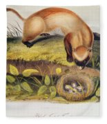 Ferret Fleece Blanket