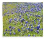 Field Of Blue Bonnet Flowers Fleece Blanket