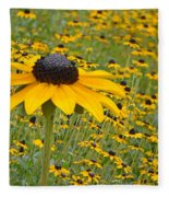 Field Of Coneflowers Fleece Blanket