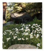 Field Of Daisies In Tahoe Fleece Blanket