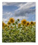 Field Of Dreams Panorama Fleece Blanket