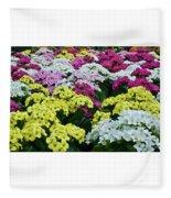Field Of Kalanchoe Fleece Blanket