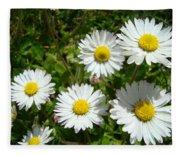 Field Of White Daisy Flowers Art Prints Summer Fleece Blanket