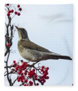 Fieldfare - 2 Fleece Blanket