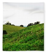 Fields In Glastonbury Fleece Blanket