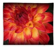 Fiery Red And Yellow Dahlia Fleece Blanket