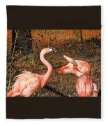 Fighting Flamingos Fleece Blanket