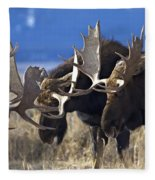 Fighting Moose Fleece Blanket
