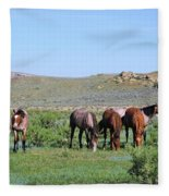 Fillies Day Out Fleece Blanket