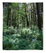 Filtered Forest Sunlight In Oregon Fleece Blanket
