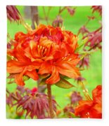 Fine Art Floral Art Prints Canvas Orange Rhodies Baslee Troutman Fleece Blanket
