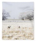Fingal Winter Farmyard Fleece Blanket