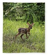 First Baby Fawn Of The Year Fleece Blanket