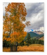 First Fall Colors In Rocky Mountain National Park Fleece Blanket