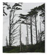 First Line Trees Along The Pacific Ocean Fleece Blanket