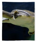 Fish 36 Fleece Blanket