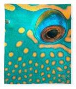 Fish Eye Fleece Blanket