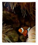 Fish In Sea Anemones Aquarium Fleece Blanket
