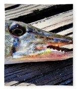 Fish Mouth Fleece Blanket