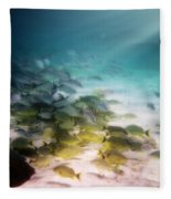 Fish Swim In The Light Fleece Blanket